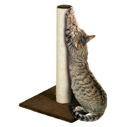 когтеточки для кішок відгуки