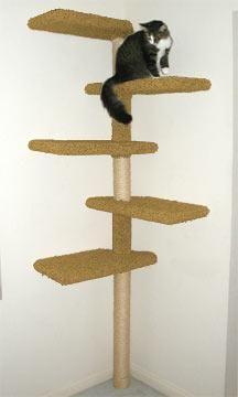 висока когтеточка для кішок
