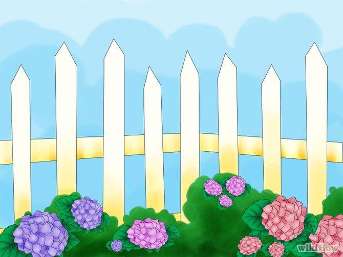 Зображення з назвою Plant Hydrangeas Step 03