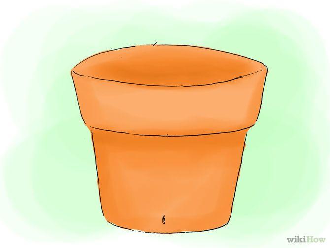 Зображення з назвою Plant Hydrangeas Step 06