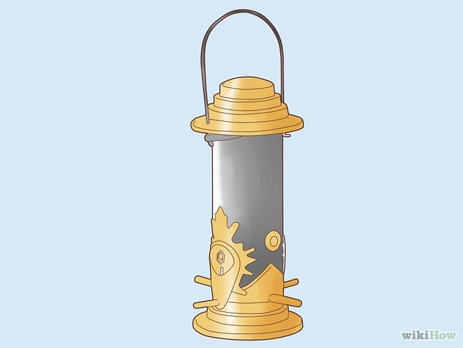 Зображення з назвою Attract Yellow Finches Step 4