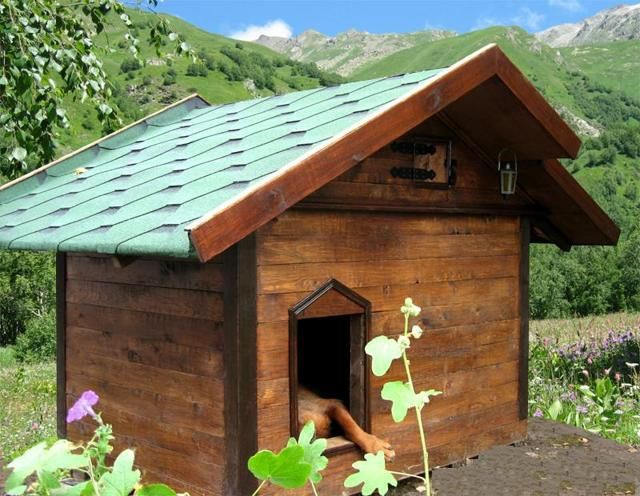 Як побудувати будку собаці