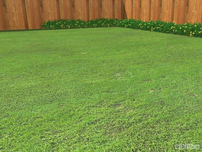 Зображення з назвою Fertilize a Lawn Step 1