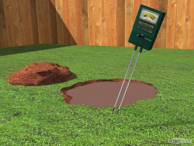 Зображення з назвою Fertilize a Lawn Step 2