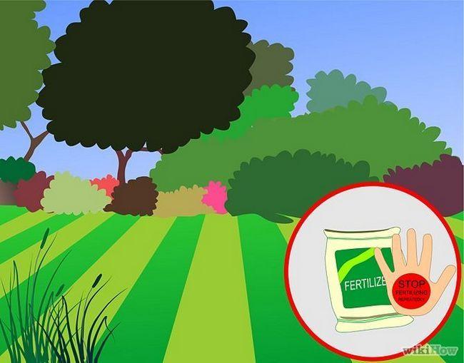 Зображення з назвою Get and Maintain a Healthy Lawn Step 1