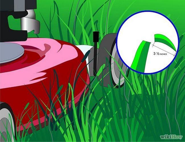 Зображення з назвою Get and Maintain a Healthy Lawn Step 2