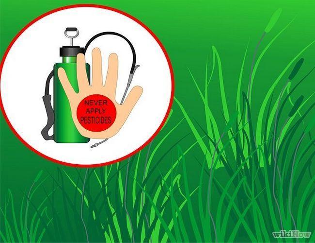 Зображення з назвою Get and Maintain a Healthy Lawn Step 3