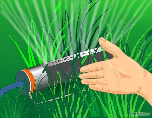 Зображення з назвою Get and Maintain a Healthy Lawn Step 4