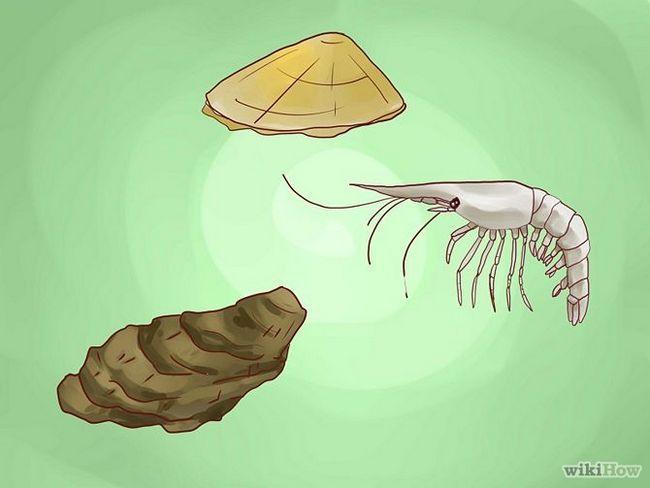 Зображення з назвою Create Lobster Farms Step 5