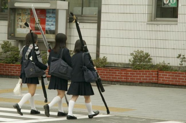 Освіта в японії: коротка характеристика основних ступенів