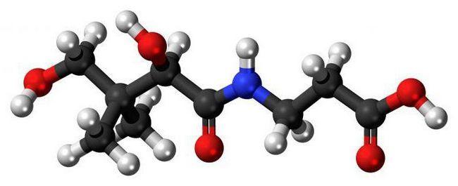 Пантотенова кислота: інструкція із застосування, склад і аналоги препарату