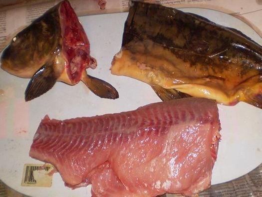 фарширована риба в духовці рецепт