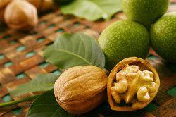 Волоські горіхи для профілактики аскаридозу