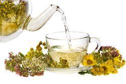 Трав`яний чай для щитовидки