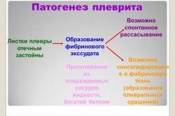 патогенез плевриту